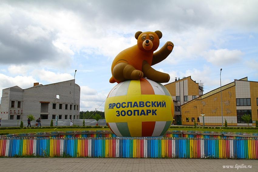 Что делать в Ярославле, когда вам грустно…